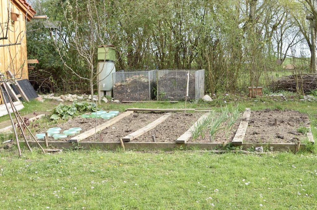gemuesebeet-gemuesegarten