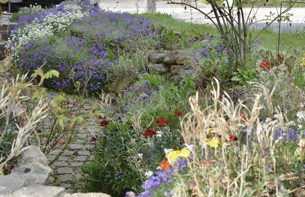 bepflanzter_lichtschacht-blumengarten