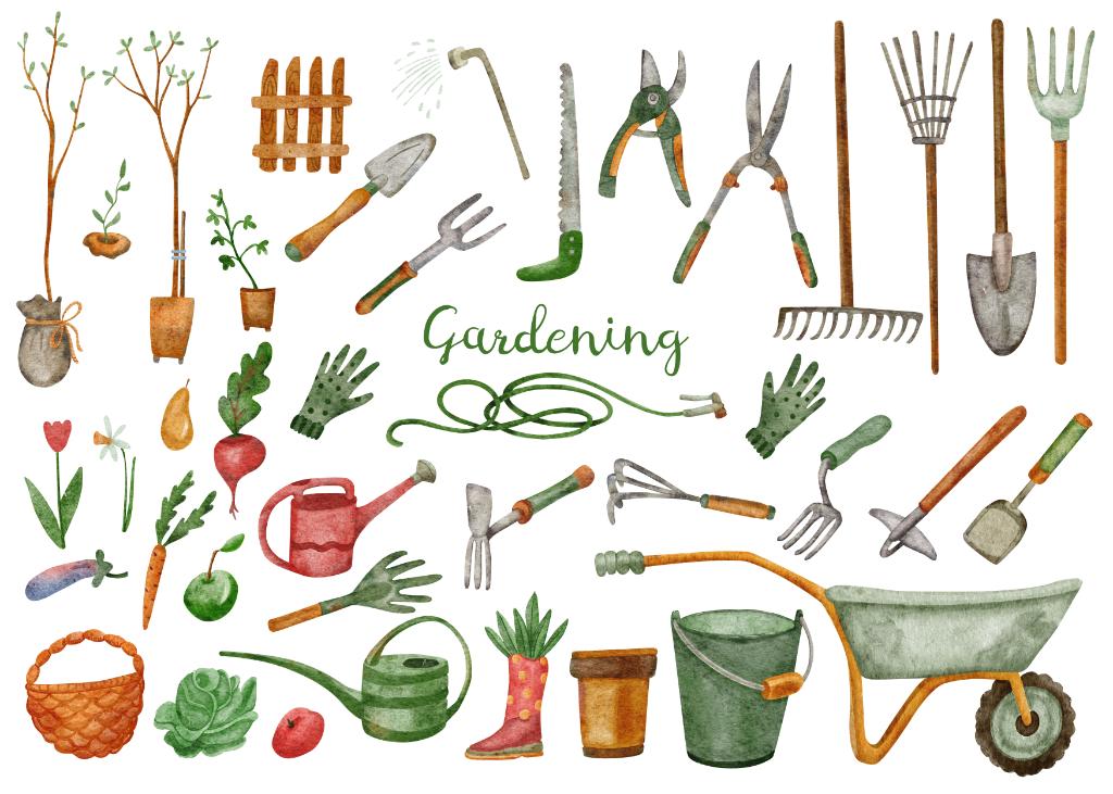 gemuesegarten_anbauplan