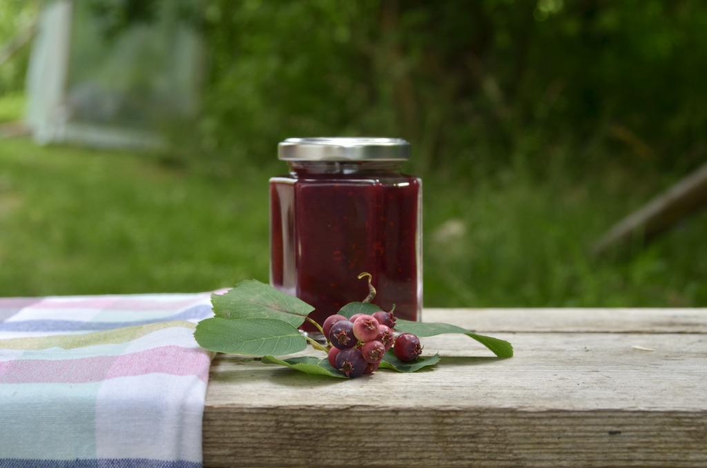 felsenbirnen_rezept-felsenbirnen_marmelade